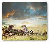 Mouse pad Safari, Due ghepardi Africa Natura Erba Animali pericolosi Cacciatori Immagine piovoso, Formato standard Gomma antiscivolo Mousepad, Multicolor,Tappetino in gomma 11,8'x 9,8', spessore 3 mm