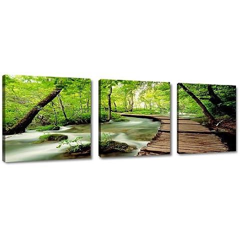 Cuadros en Lienzo 150 x 50 cm Nr. 4216 naturaleza enmarcado y listo para colgar, calidad de la marca