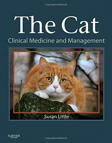 the-cat-clinical-medicine-and-management-1e