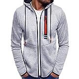 Yvelands Herren Sweatshirt Plus Size Zipper Pullover Langarm Kapuzenpulli Tops Bluse(CN-XL,Grau)