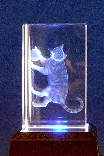 3D Cat inciso al laser di cristallo ornamento in confezione regalo da collezione regali AWD