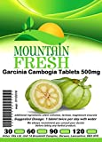 Garcinia Cambogia All Natural Tablets 60 x 500mg FREE UK Postage from Mountain Fresh