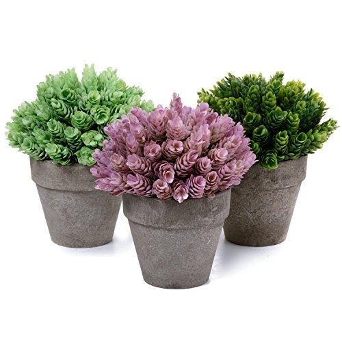 T4U Dekorative Künstliche Pflanzen Bonsai Kunstpflanze mit Topf - Gras in 3 Farben Set