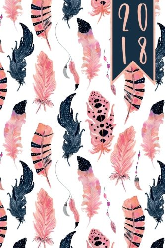 2018: Diary Planner Journal - WO2P Week on 2 Pages A5 Pink and Blue Watercolour Boho Feathers Cover: Volume 1 (Watercolour Diaries)