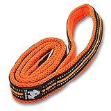 TrueLove Hundeleine - reflektierende Leine für Hunde (Orange)