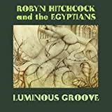 Songtexte von Robyn Hitchcock and The Egyptians - Luminous Groove