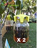 MGI Developpement - Juego de 2trampas ecológicas para avispas, fabricadas en Italia