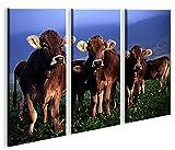 islandburner Bild Bilder auf Leinwand Kühe XXL Poster Leinwandbild Wandbild Art up Your Life