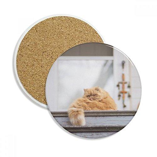 Animal Fat Garfield Katze Foto Keramik Untersetzer Tasse Halter saugfähig Stein für Getränke 2Geschenk -