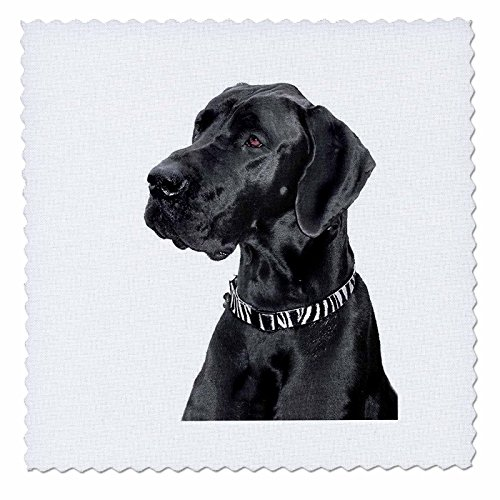 hwarz Deutsche Dogge–Quilt Squares, Polyester, schwarz, 12x12 inch quilt square (Quilt Square Hund)