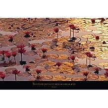 Empire 157485 - Póster de flores de loto (texto en alemán, 91,5 x 61 cm)