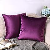 CCRoom Kissenhülle, Packung 2 von Velvet Soft Dekokissen Dekorative Kissenbezug für Sofa Auto Schlafzimmer 18 x 18 Zoll 45 x 45 cm(Auberginen-Violett)