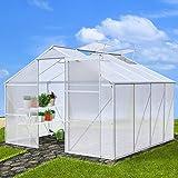 Jago – Invernadero para jardín (con 4 ventanas) de tamaño 10,19 m³ - aprox. 270 x 250 x 190 cm - modelo a elegir