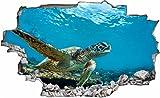 DesFoli Schildkröte Meer 3D Look Wandtattoo 70 x 115 cm Wanddurchbruch Wandbild Sticker Aufkleber C181