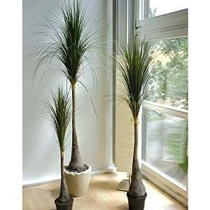 Beaucarnea artificiel, 406 feuilles, 120 cm - Plante artificielle / Pied d'éléphant artificiel - artplants