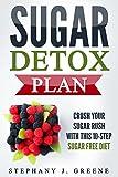 Sugar Detox Plan: Crush Your Sugar Rush With This 10-Step Sugar Free Diet