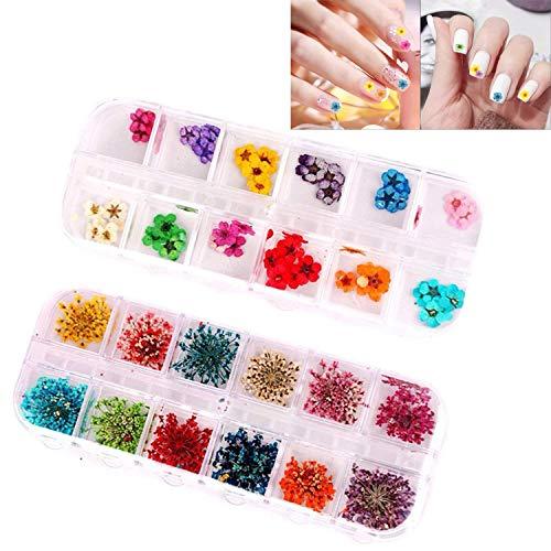 Wohlstand 2 scatole di vero fiori secchi di adesivi 3d per unghie nail art accessori per manicure punte decorazione 12 colori,new diy mini cute flower utile