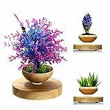 Schreibtischdekoration elektronisch magnetische schweben LED Floating Rotation Blumentopf DIY Floating Pflanzen Geschenk