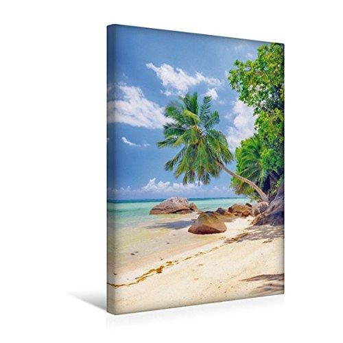 Premium Textil-Leinwand 30 cm x 45 cm hoch, Glitzernde, ruhige Bucht mit malerischen Palmen und Felsen bei Anse a la Mouche | Wandbild, Bild auf a la Mouche, Mahe, Seychellen (CALVENDO Orte)