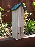 Roots & Shoots Maison pour papillons et papillons de nuit Observation et hibernation des papillons