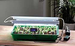 Romberg Zimmergewächshaus mit Zwei Lampen, Thermodog und Thermostat-Mini Gewächshaus- Maximus Complete-57x 38x 18cm