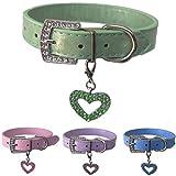Hundehalsband aus Leder mit gratis Herzanhänger in den Größen XS, Small, Medium und Large (XS, Grun)