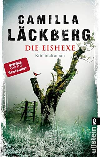 Die Eishexe: Kriminalroman (Ein Falck-Hedström-Krimi 10) (German ...