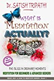 What is Meditation Actually?: Find bliss in ordinary moments. Meditation for beginners & advanced seekers. (What, Why, & How to meditate series: Book 1)