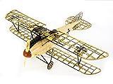Arkai Albatross Kit Plus (Auch für RC Ausbau!) Standflugmodell