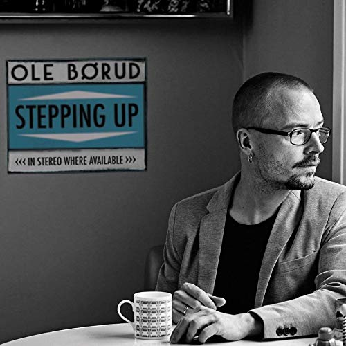 Stepping Up [Import allemand]