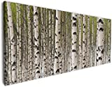 Wallario XXL Leinwandbild Birkenwald - Baumstämme in Schwarz Weiß - 60 x 150 cm in Premium-Qualität: Brillante lichtechte Farben, Hochauflösend, verzugsfrei