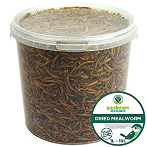 GardenersDream Dried Mealworms | Premium Garden Wild Bird Food Mix Balanced Formula | Protein-Rich, Great Source of Energy | Contains Beneficial Mixed Vitamins | Large Variety