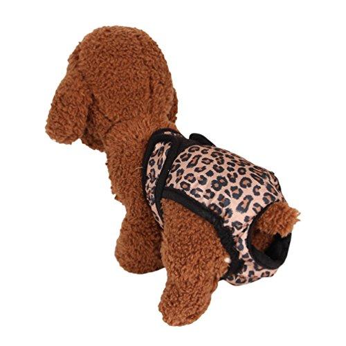 Yiiquanan Hundeschutzhose aus Hochwertigem, Läufigkeitshose für Hündinnen Wiederverwendbare Waschbare Hundewindeln (Leopard, Asia XL)