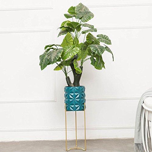 HJ Étagère Verticale Simple et innovatrice Simple-Couche Balcon Salon Suspendus Cadre d'orchidée Pot planteur présentoir Garden (Couleur : Green, Taille : 20 * 60CM)