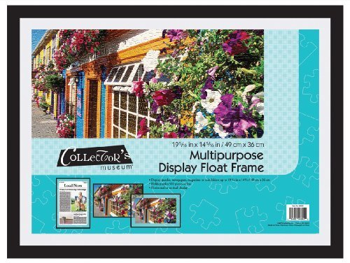 Mcs Float Frame (MCS Multi Use Display Float Frame for Puzzles and More by MCS Industries Inc.)