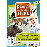 Paula und die wilden Tiere Vol. 9  -  Wie schlau ist der Fuchs?/Ein Wildschwein zum knuddeln