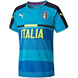 Puma Figc Maillot Homme