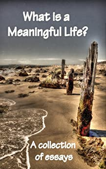 Meaningful life essay