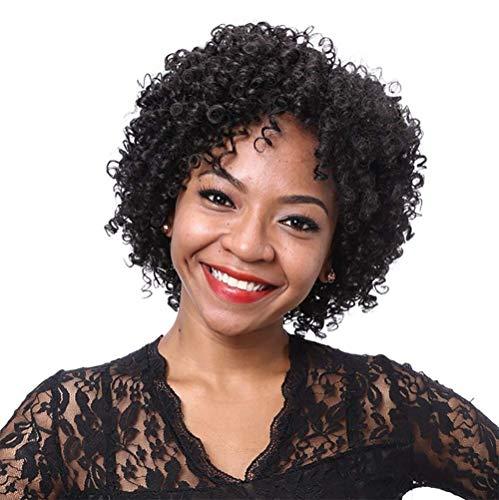 Lockige Perücken Für Schwarze Frauen Natürliche Farbe Lockige Explosion Kopf Perücke Reines Menschenhaar Lace Front Perücke 130% Dichte Unverarbeitete Reine Brasilianische Haar Perücken (10 Zoll)