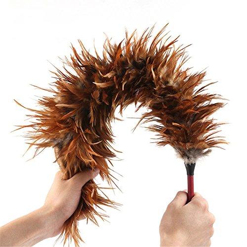 L Y Hahn Huhn Feather Duster | Hausreinigung, Autoreinigung | Bürste Für Staub | Dusters Zu Hause Reinigen Staubwedel mit Echtem Holzgriff | Umweltfreundlicher, Einfach Zu Reinigender Staub (Einfach Kostüme Zu Machen)
