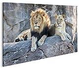 islandburner Bild Bilder auf Leinwand Löwen Paar V2 1p XXL Poster Leinwandbild Wandbild Dekoartikel Wohnzimmer Marke