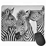 Professional Gaming Mouse Pads Zebra Image Laptop Pad Non-Slip Rubber Stitched Edges 18X22cm
