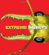 Extreme Insects