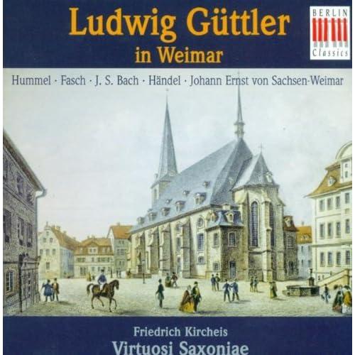 Concerto for Trumpet, 2 Oboes, Strings and Basso continuo in D Major: III. Tempo di menuetto - Allegro