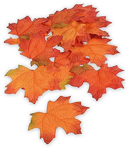 Ahorn-Laub, herbstliche Blätter, Herbst-Dekoration, 16