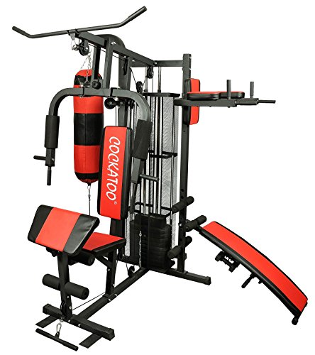 Cockatoo HG-03 Professional Home Gym Station With Steel Frame Full Cover At Back , Home Gym Machine