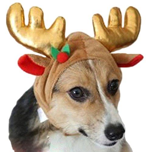 AIYUE Weihnachten Haustier Kostüm Hunde Rentier Elchgeweih Mütze -