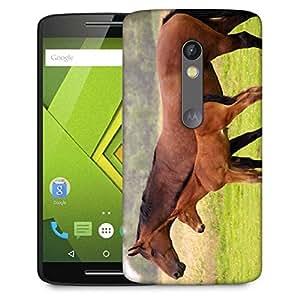Snoogg Baby Horse Designer Protective Phone Back Case Cover For Lenovo Motorola Moto G4