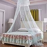TJW Princess Moskitonetz, Rund Dome Bed Fly Insektenschutz Zimmer Decor für Innen und Außen Lichtgrün