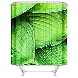 SonMo Duschvorhang Polyester Bunt Blätter mit Tautropfen Anti-Bakteriell Wasserdicht Badezimmer Vorhang mit Duschvorhangringen Anti-Schimmel Blickdicht 3D Digitaldruck Als Trennwand 180X180CM